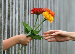 Jak odzyskać wybrankę serca?