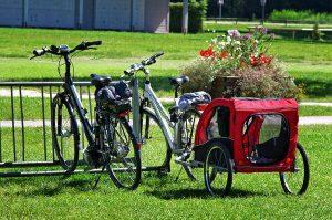 Przyczepki przystosowane do rowerów