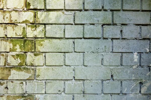 osuszanie ścian