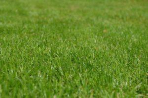 Ładna wytrzymała sztuczna trawa na balkon